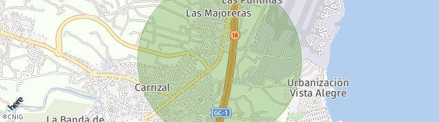 Mapa Carrizal