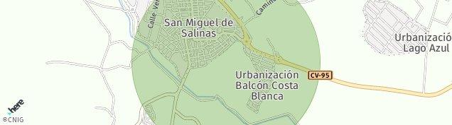 Mapa San Miguel de Salinas