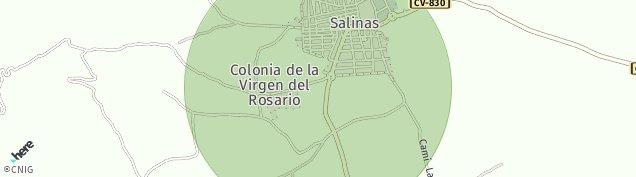 Mapa Salinas