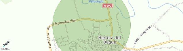 Mapa Herrera del Duque