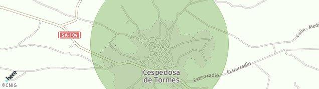 Mapa Cespedosa de Tormes