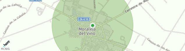 Mapa Moraleja del Vino