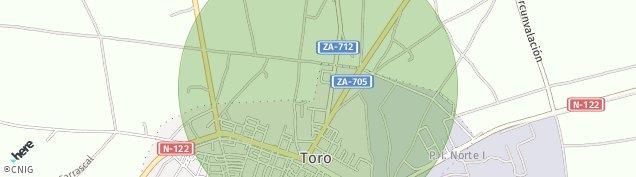 Mapa Toro