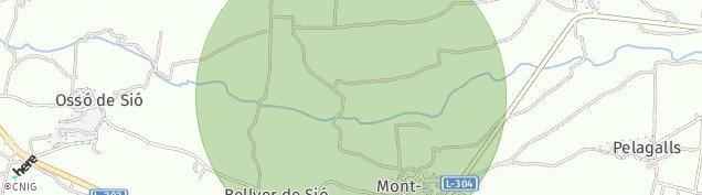 Mapa Mont-Roig de Segarra