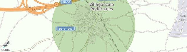 Mapa Villagonzalo Pedernales