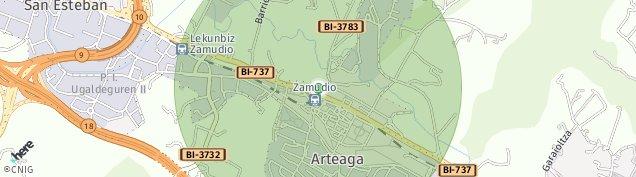 Mapa Arteaga-San Martin